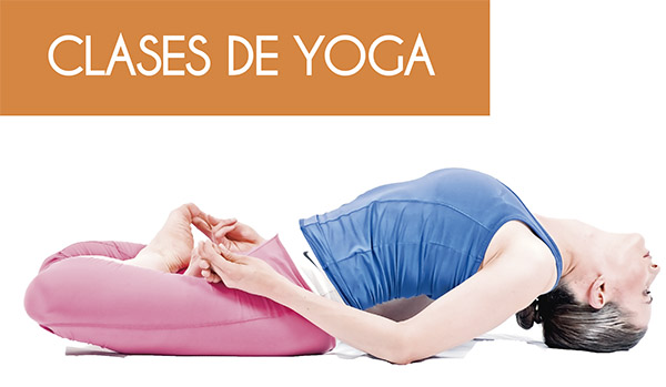 Post image for Curso de yoga practico por internet